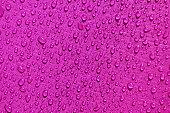 ピンクの塗膜防水材、水の滴をリップ ストップ布
