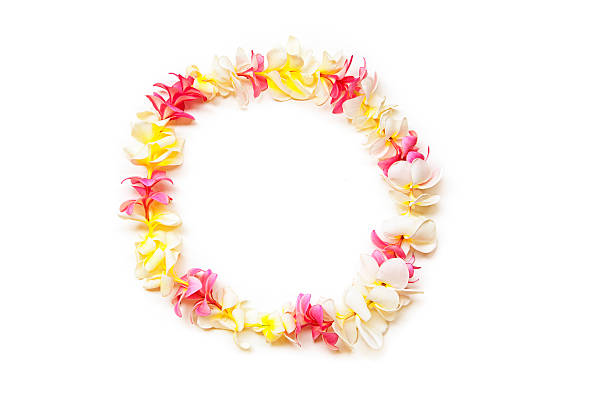 Rose, de blanc et de jaune Plumeria Lei de Hawaï - Photo