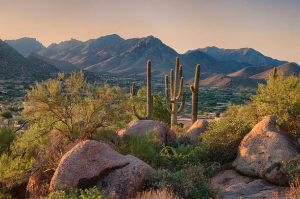 Pinnacle Peak Park as sun rises over cactus and hiking trails. stock photo