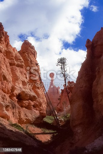 The pinnacles and red rock spiers that form Bryce Canyon in Utah are called \