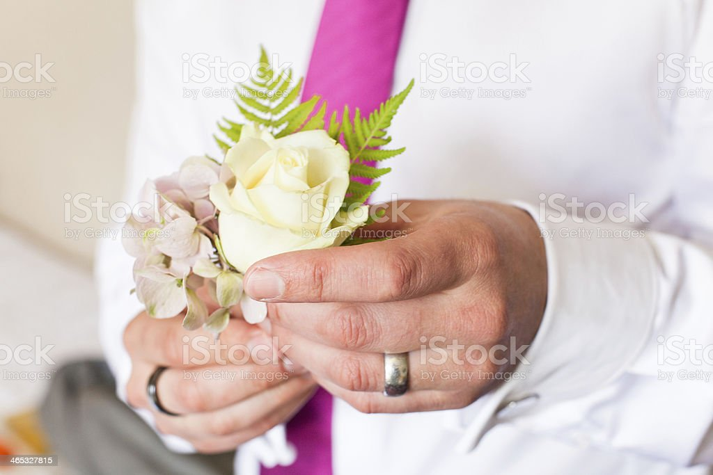 Pinning a Boutonniere royalty-free stock photo
