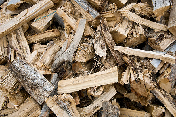Pinon Fire Wood Textured of fire wood pile - Stock Photo aisne stock pictures, royalty-free photos & images