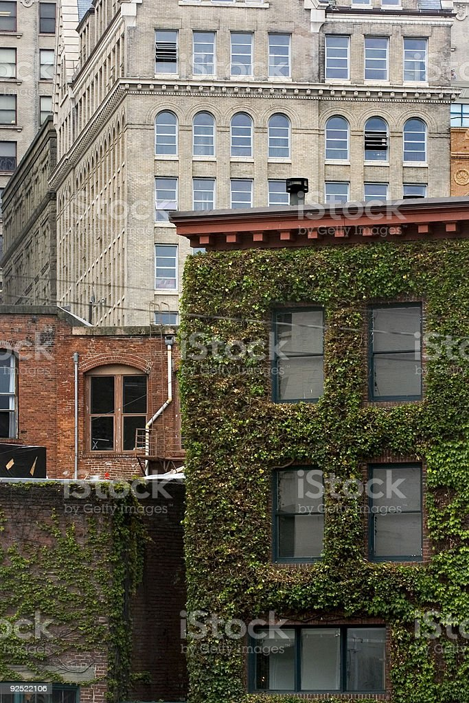Pioneer square royalty-free stock photo