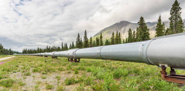 pipeline summer landscape panorama - crude oil stock photos and pictures