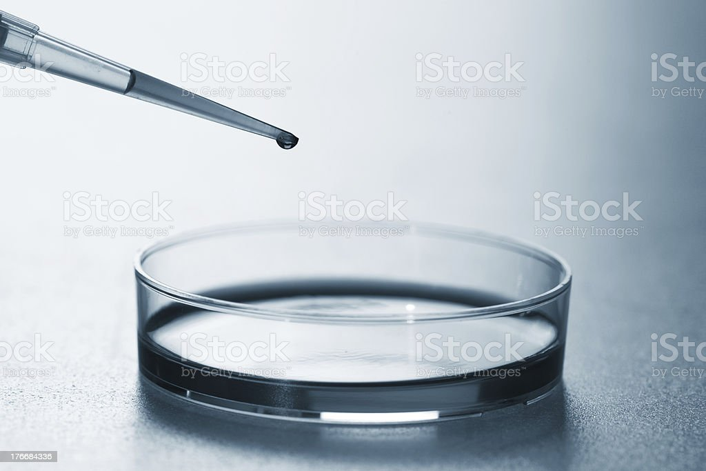 pipette royalty-free stock photo