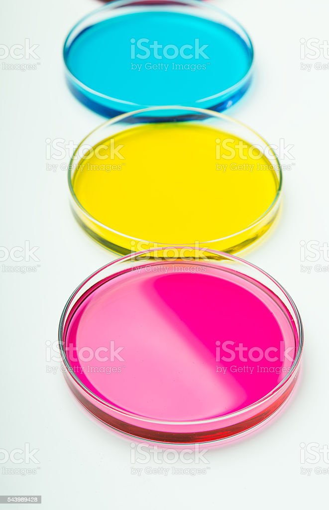 Pipette with drop of color liquid and petri dishes stock photo