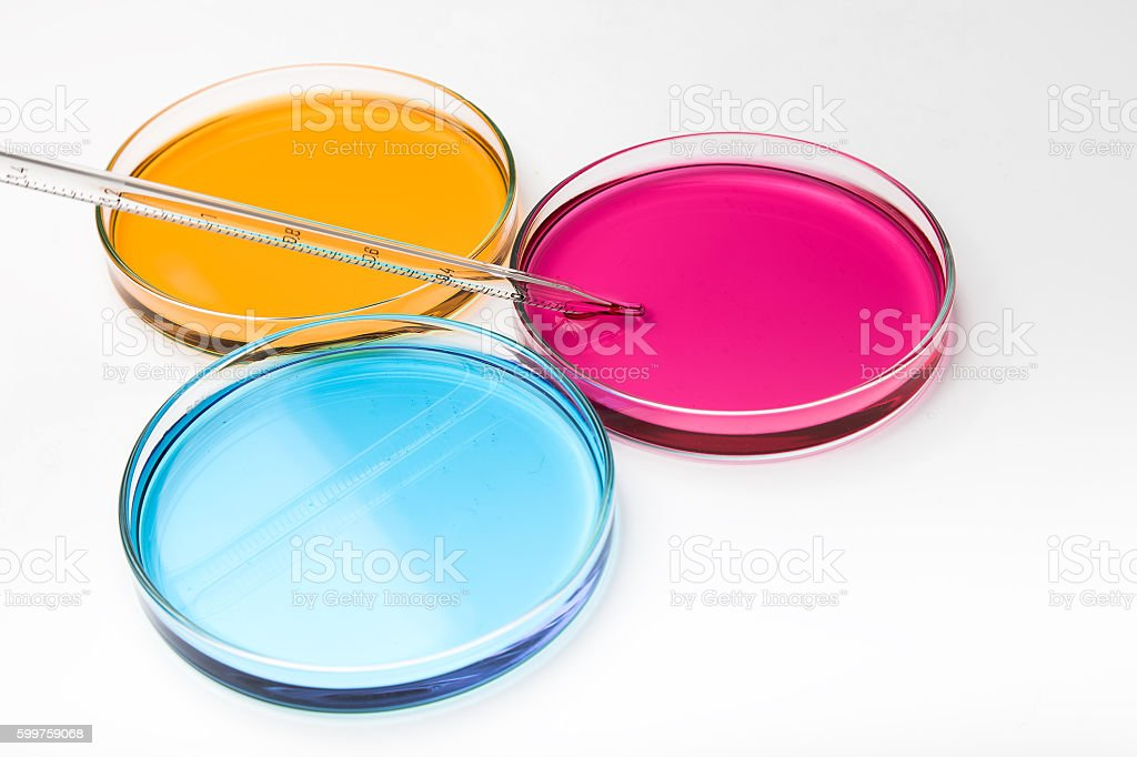 Pipette with drop of color liquid and petri dishes.. stock photo
