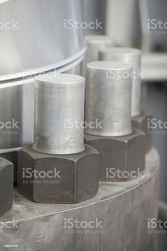 Piping Nuts royalty-free stock photo