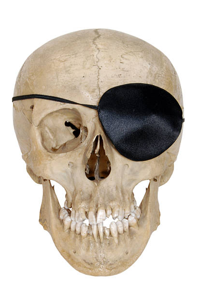 pirate skull Pirate Halloween costume. costume eye patch stock pictures, royalty-free photos & images