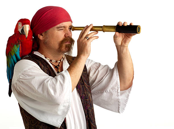 pirate with parrot searching using spyglass, white background. - pirates stock photos and pictures