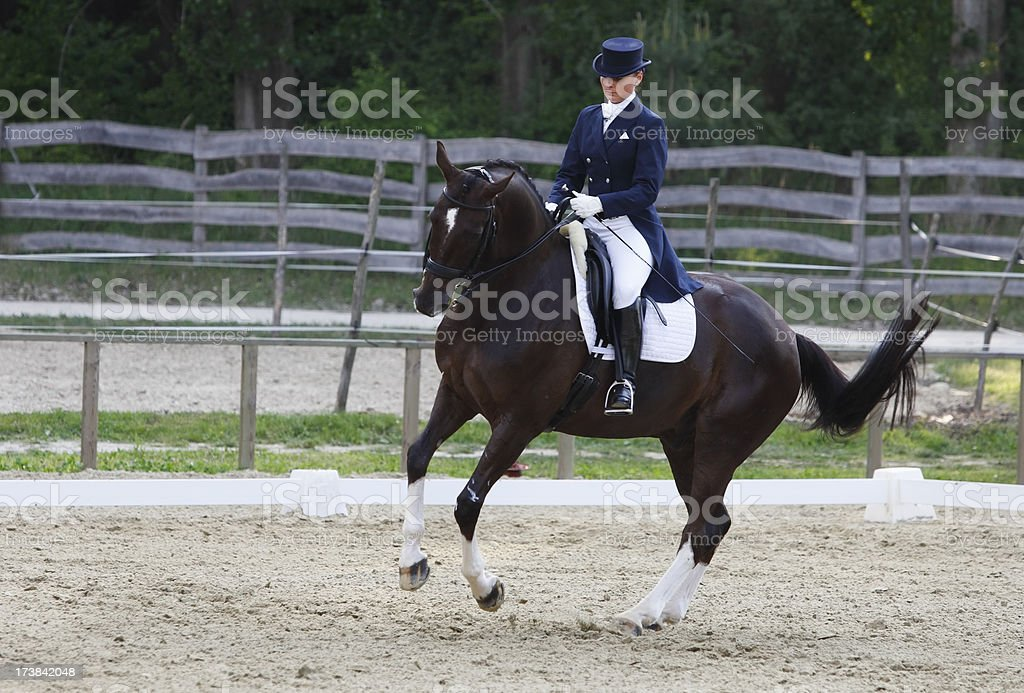 Pirouette on a dressage competition royalty-free stock photo