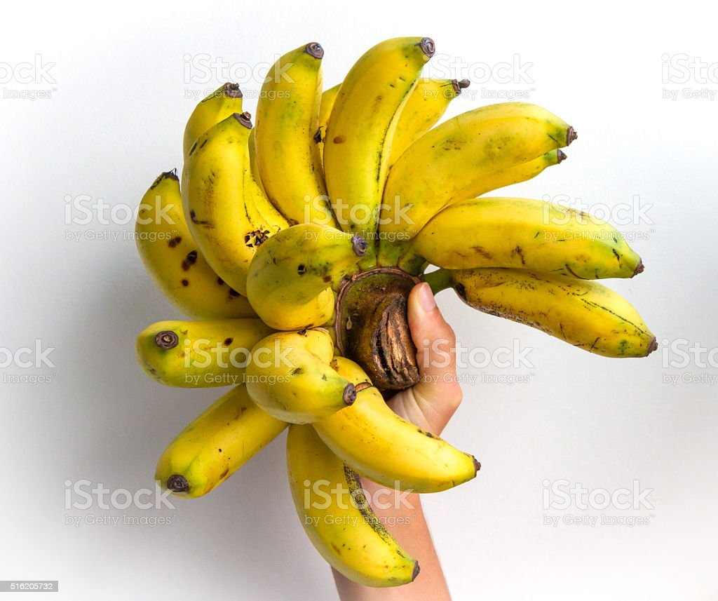 Pisang Ambon Stock Photo Download Image Now Istock