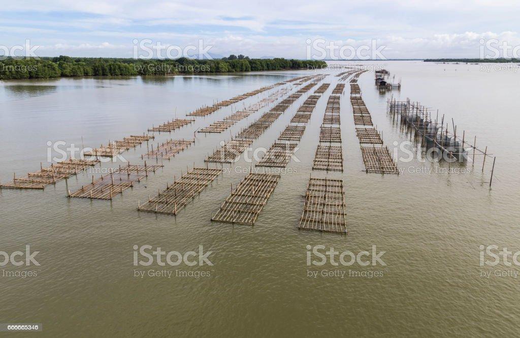 pisciculture aquaculture fish farming in Thailand. stock photo