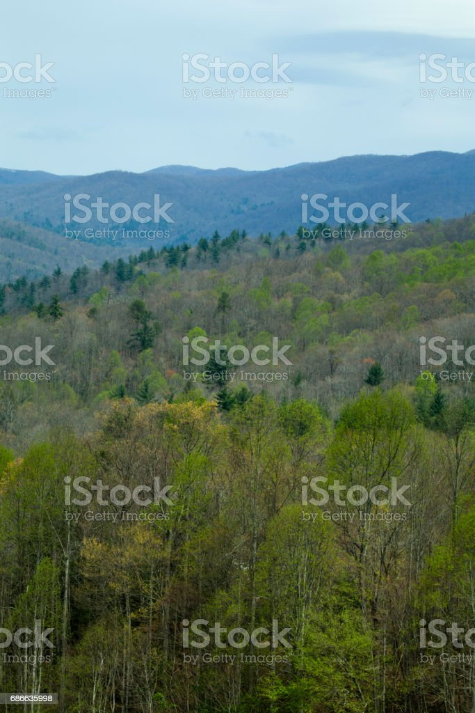 Pisgah National Forest, NC stock photo