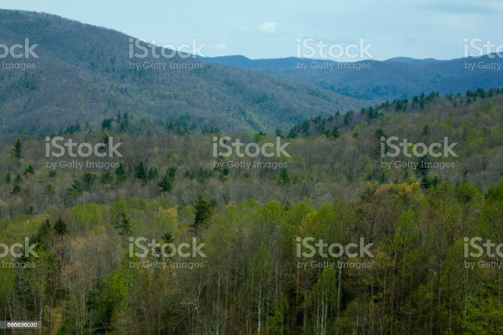 Pisgah National Forest, NC royalty-free stock photo