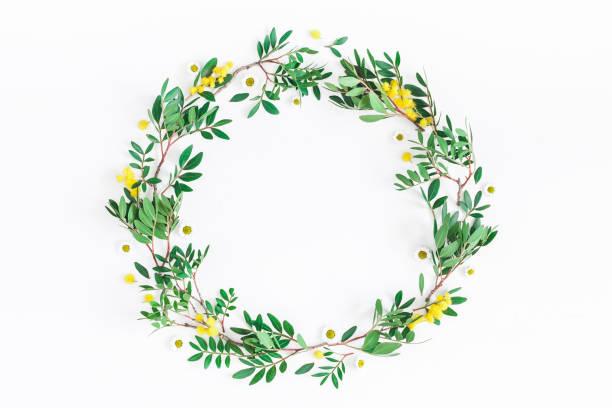 ピスタチオの葉とミモザの花。フラット横たわっていた、トップ ビュー - リース ストックフォトと画像