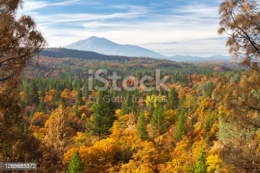 Fall colors grace Pit Canyon, with dormant lava dome Burney Mountain in the background. Fall River Mills, California, USA
