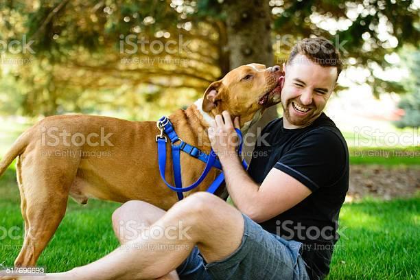 Pitbull kiss picture id517696693?b=1&k=6&m=517696693&s=612x612&h=hfgtvmhhaxicfsaksmanr7x413ovll147788xukvgjm=