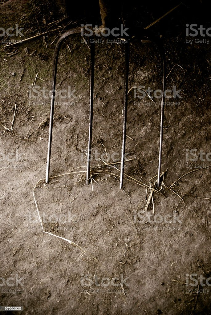 Pitch or garden fork in old dirty barn royalty-free stock photo
