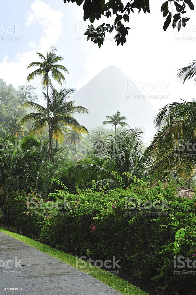 Piton At St. Lucia In Heavy Rain stock photo