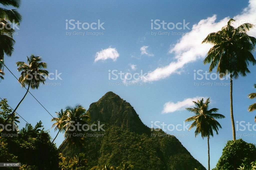 Piton in Saint Lucia, Windward Islands stock photo