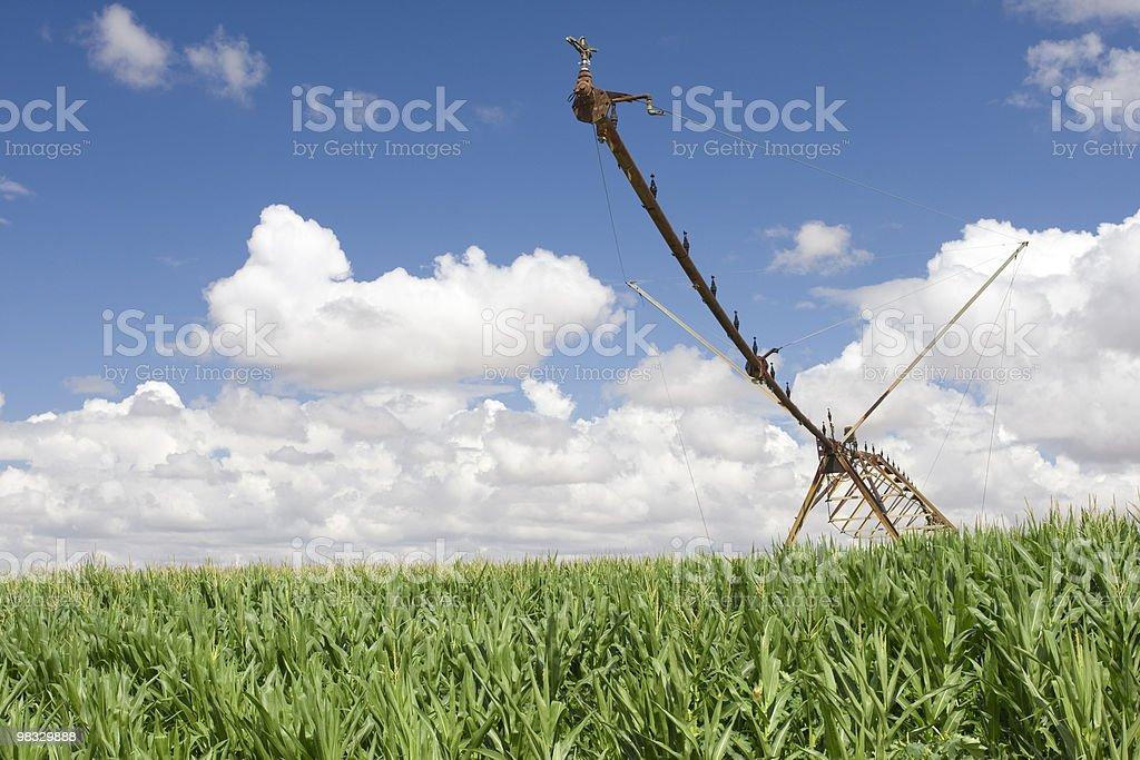 Sistema di irrigazione con pivot foto stock royalty-free