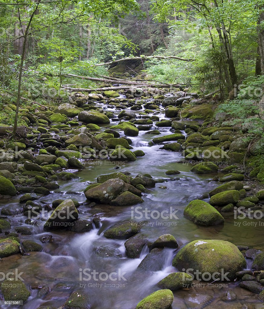 Pixstarr Nature Collection royalty-free stock photo