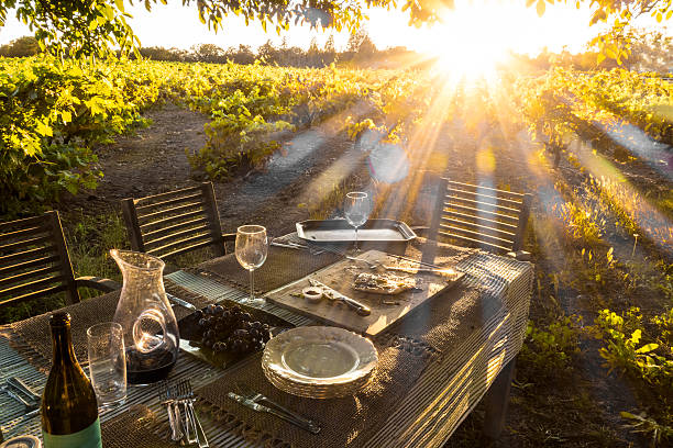 Pizza in the vineyard The pizza's been eaten.  Now time for more wine and the sunset. Sonoma County, California. sonoma stock pictures, royalty-free photos & images