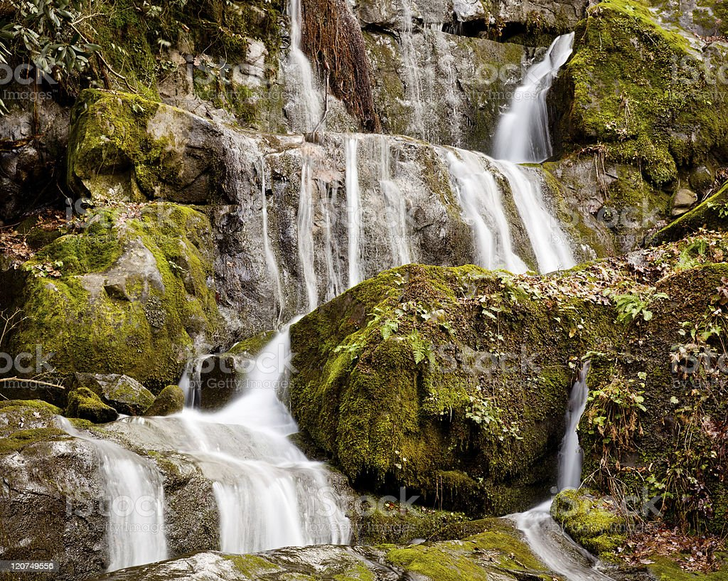 Place of a Thousand Drips in Smokies royalty-free stock photo