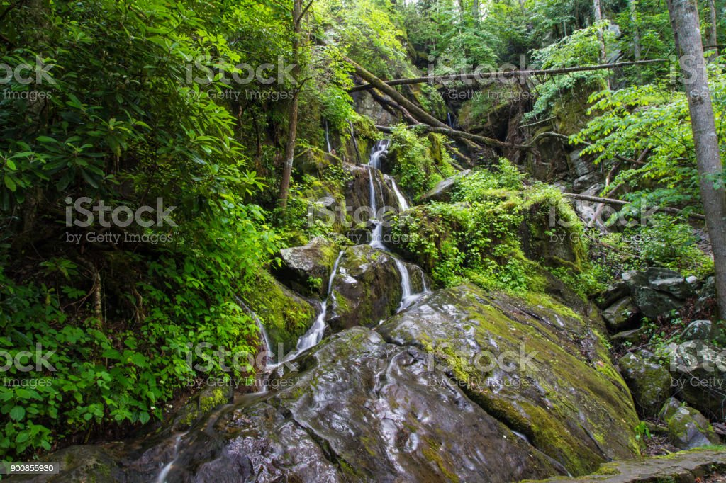Place Of A Thousand Drips On The Roaring Fork Motor Nature Trail In The Great Smoky Mountains National Park stock photo