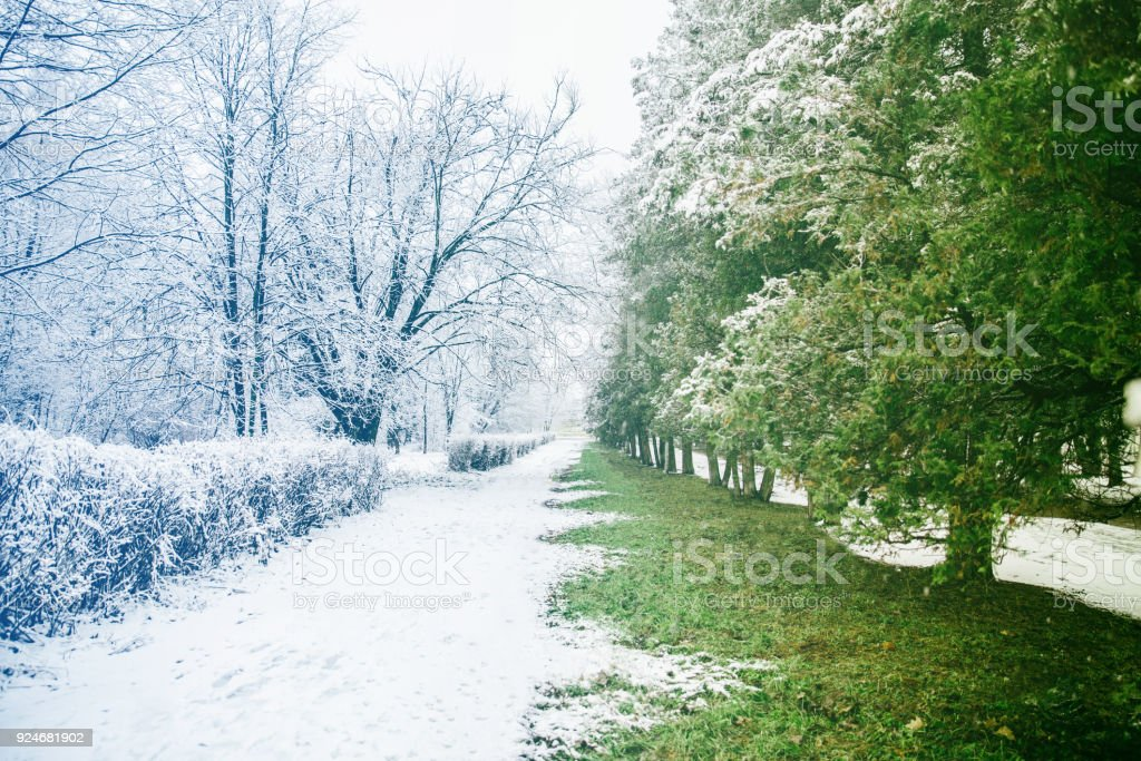 place where winter meet with spring in city park stock photo