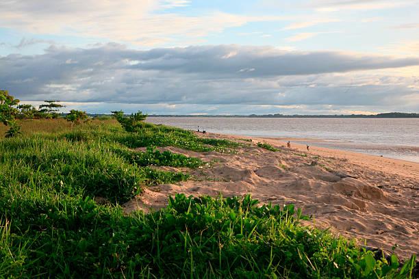 'Plage des Hattes'Strand in Yalimapo, Französisch-Guayana – Foto