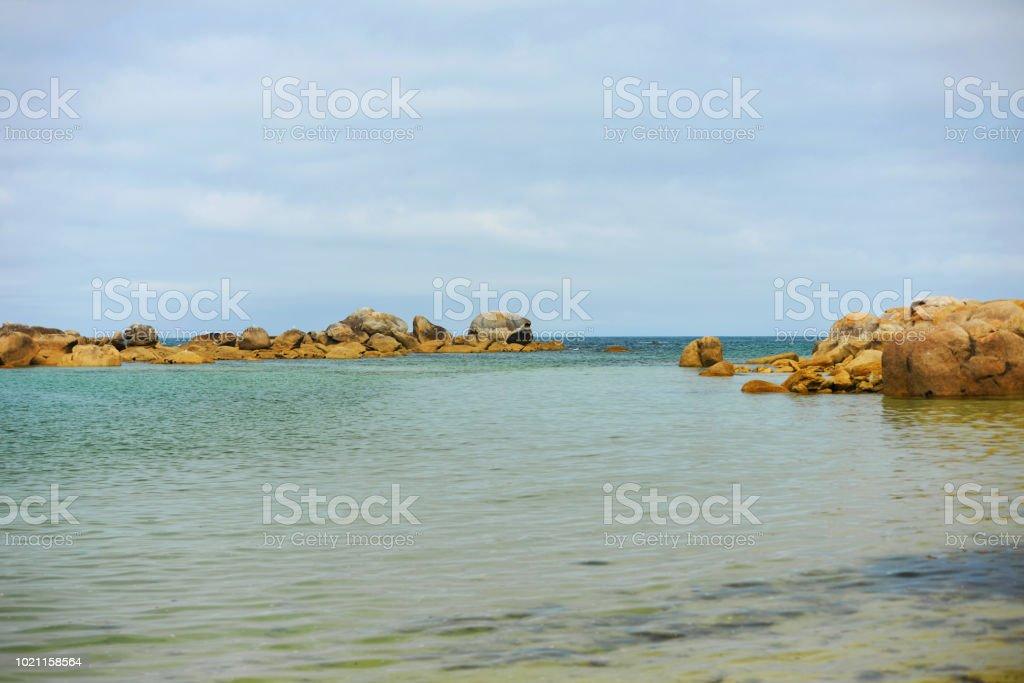 Plage Sur La Cote De Bretagne Stock Photo Download Image Now Istock