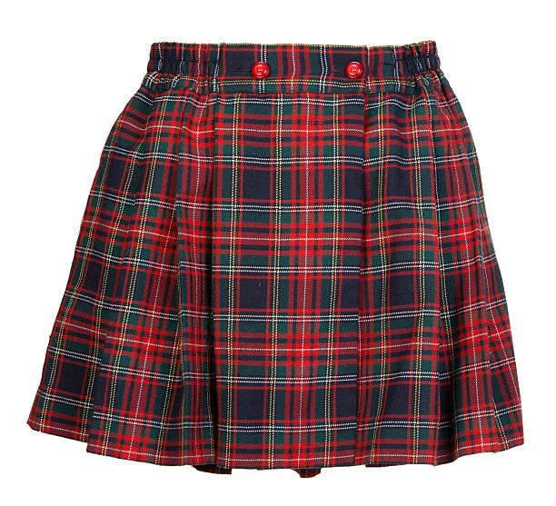 17d0e14f7767cc Plaid red feminine skirt stock photo. Blue checkered pleated cotton midi skirt  isolated ...