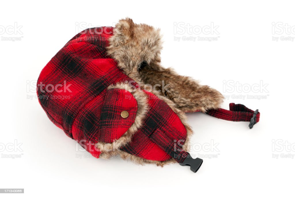 Plaid Winter Hat stock photo