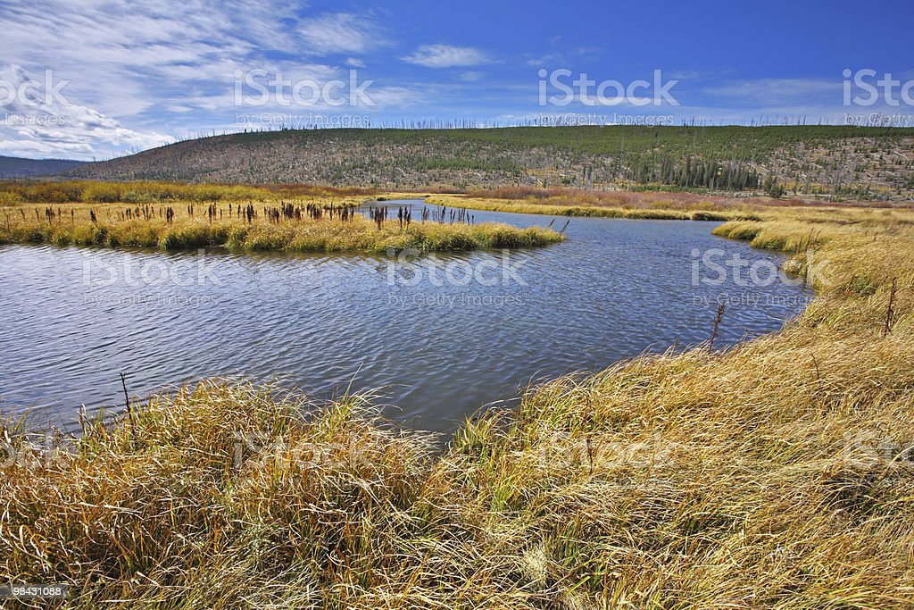 Plain in park Yellowstone. USA royalty-free stock photo
