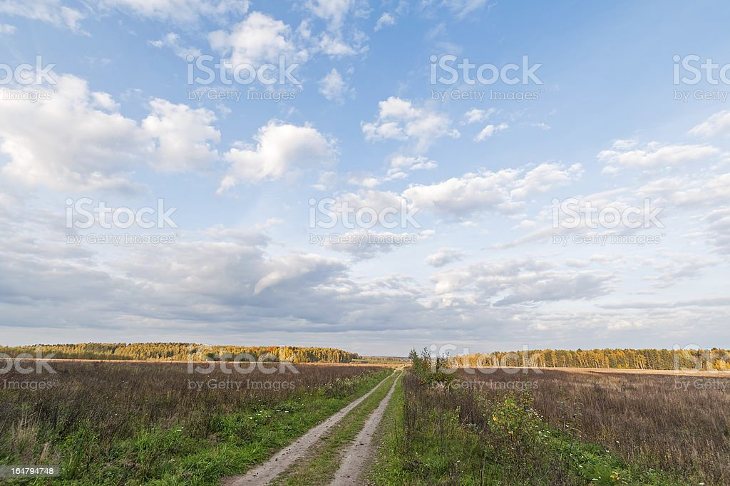 Plain landscape with dirty road through meadow vanishing in horizon royalty-free stock photo