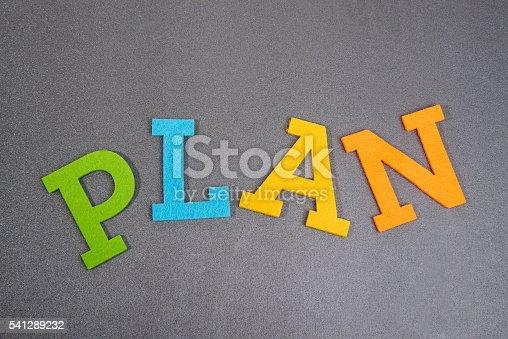 istock Plan 541289232