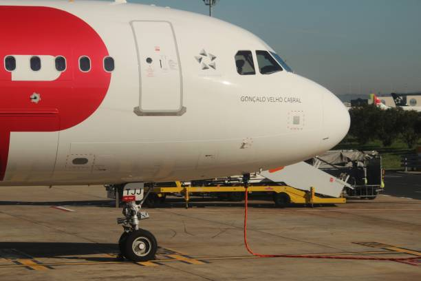 Plane parked at the Lisbon airport – zdjęcie