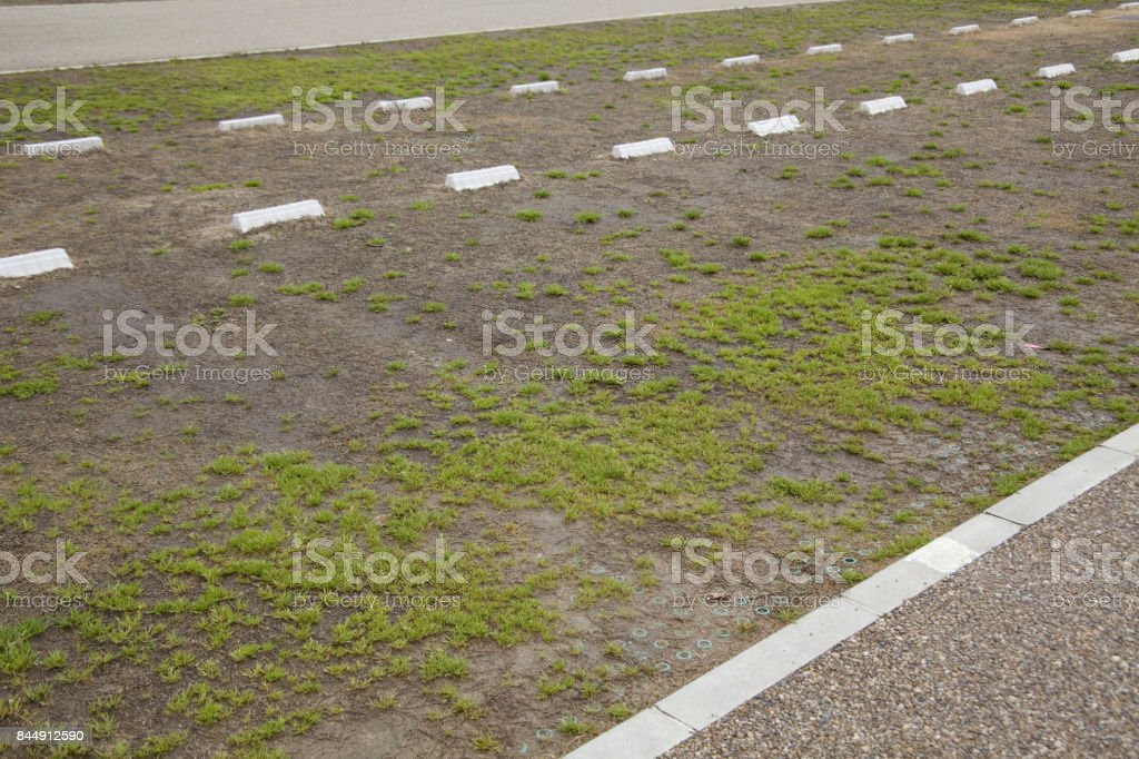 Plane parking lot carpeted the grass stock photo
