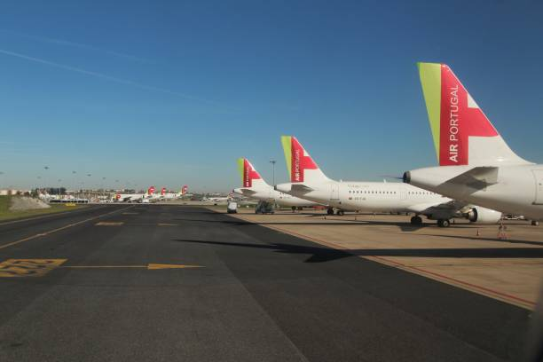 Planes parked in a row at the Lisbon airport – zdjęcie