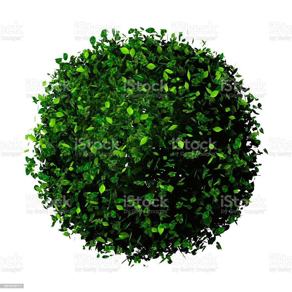 Planète Terre en laisse. Eco ballon. - Photo