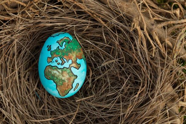 planetenerde gemalt auf ein ei in ein vogelnest - schöne osterbilder stock-fotos und bilder