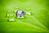 3X macro of waterdrops on a leaf reflecting our earth. Shallow depth of field. ProPhoto color space. Asia earth orientation.