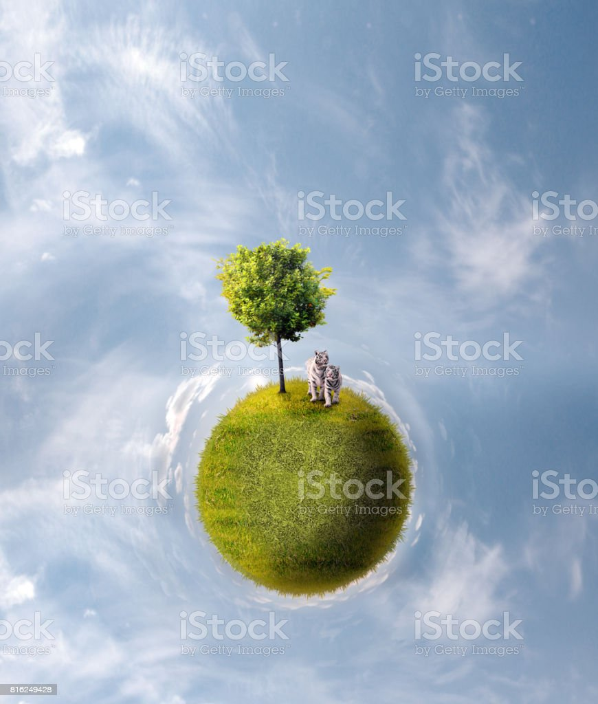 Planet with tree stock photo