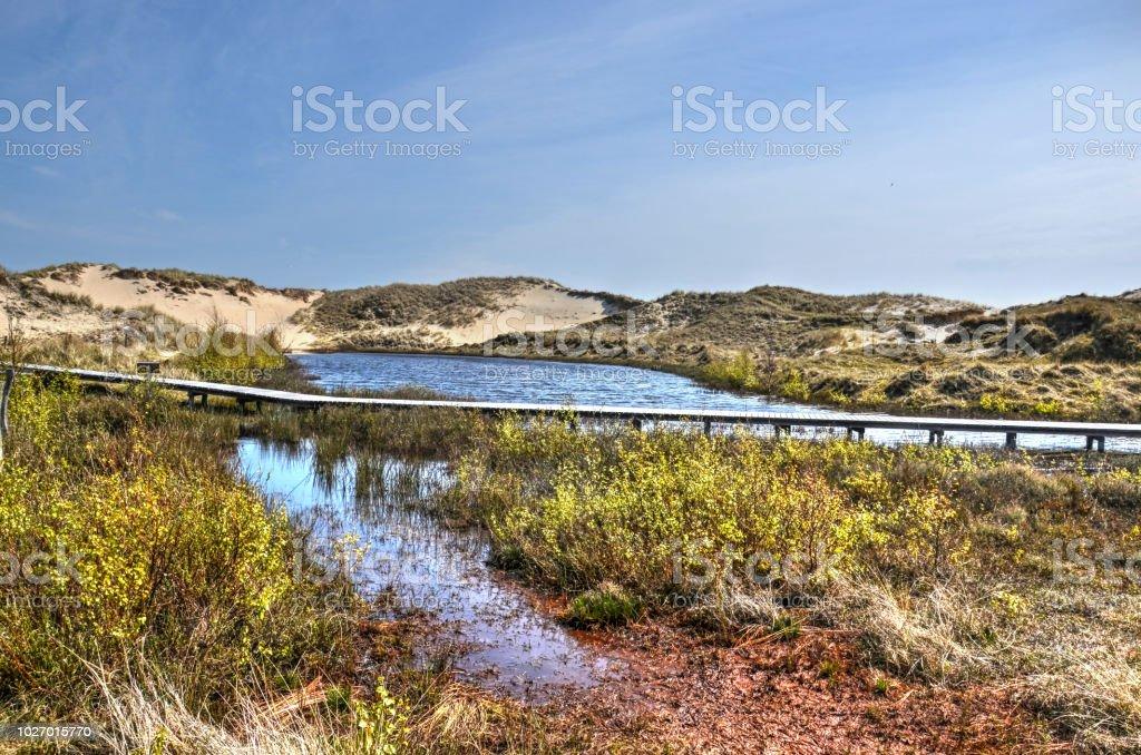 Hängebrücke über eine Düne See auf Amrum – Foto