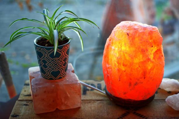 plante et un saltlamp sur une boîte en bois en face d'une macro de closeup fenêtre - lampe électrique photos et images de collection