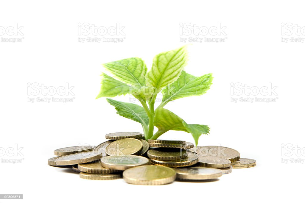 plant and coıns royalty-free stock photo