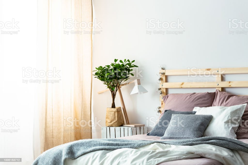 Plant And Lamp On Table Next To Wooden Bed With Pink And Grey ...
