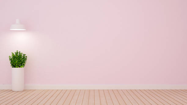 plant and pendent lamp in empty room on light pink tone - 3D Rendering stock photo